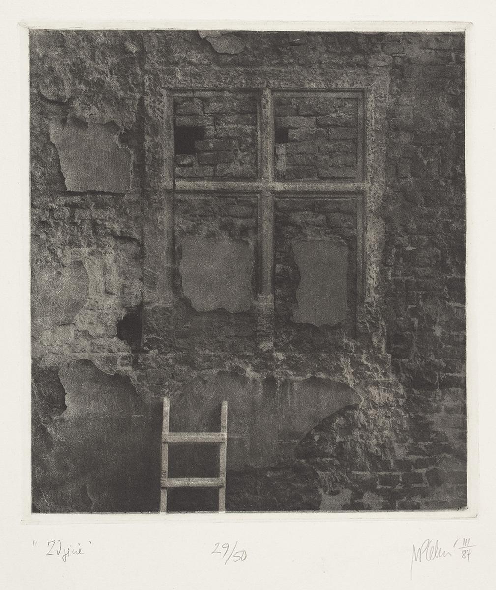 Zdjęcie, 1984